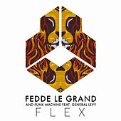 Flex by Fedde Le Grand and Funk Machine