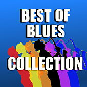 Best Of Blues Collection de Various Artists