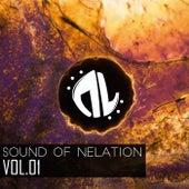 Sound of Nelation Vol.01 von Various Artists