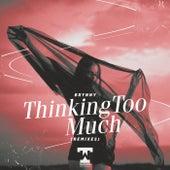 Thinking Too Much (Remixes) von Brynny
