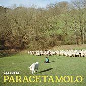 Paracetamolo by Calcutta