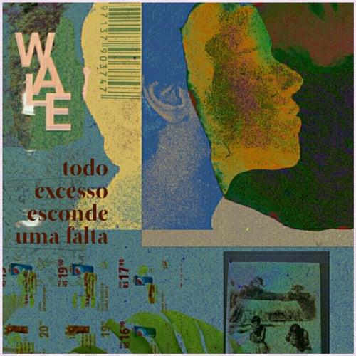Todo Excesso Esconde uma Falta by Wale