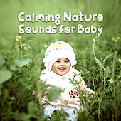 Calming Nature Sounds for Baby de Sounds Of Nature