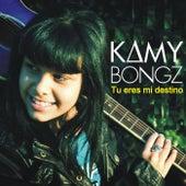 Tu Eres Mi Destino by Kamy Bongz