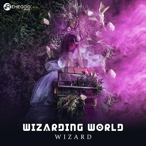 Wizarding World di Wizard