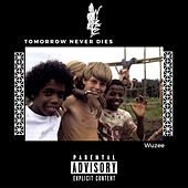Tomorrow Never Dies de WuZee
