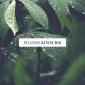 Relaxing Nature Mix de Sounds Of Nature