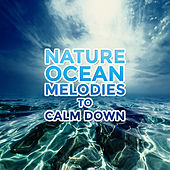 Nature Ocean Melodies to Calm Down de Nature Sound Collection