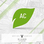 Artist Choice 060: Slang (6th Selection) by Various Artists