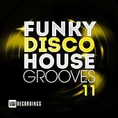 Funky Disco House Grooves, Vol. 11 - EP de Various Artists