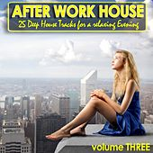 After Work House Volume 3 - 25 Deep House Tracks For A Relaxing Evening by Various Artists