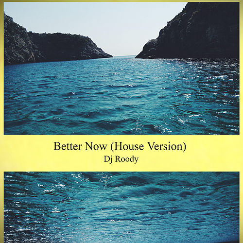 Better Now (House Version) by DJ Roody