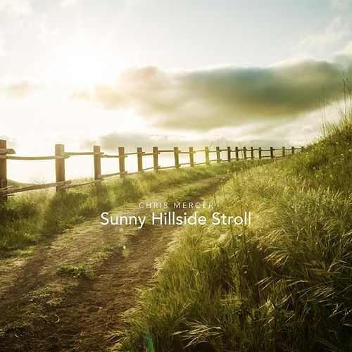 Sunny Hillside Stroll by Chris Mercer