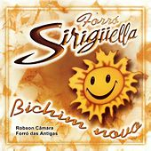 Forró Siriguella, Vol. 3 - Bichim Novo von Forró Sirigüella