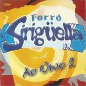 Forró Siriguella, Vol. 6 (Ao Vivo) von Forró Sirigüella