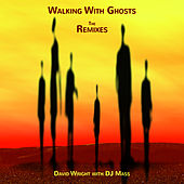 Walking with Ghosts Remixes by David  Wright