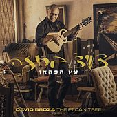 The Pecan Tree by David Broza
