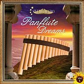 Panflute Dreams, Vol. 1 by Silvio Condo
