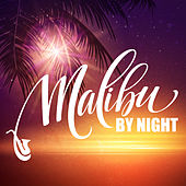 Malibu by Night (Exquisite Cocktail Party) de Various Artists