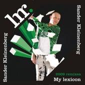 My lexicon (2009 Remixes) by Sander Kleinenberg