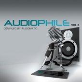 Audiophile Vol.2 de Various Artists