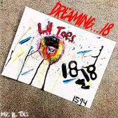 Dreaming...18 von Various Artists