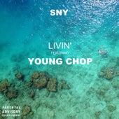 Livin' de Sny