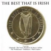 The Best That is Irish Volume 1 de Various Artists