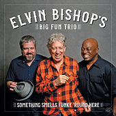 Something Smells Funky 'Round Here by Elvin Bishop's Big Fun Trio