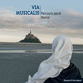 Via musicalis de Various Artists