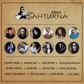 Şahturna Türküleri, Vol. 1 by Various Artists