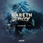 Firebird von Gareth Emery