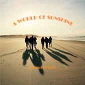 A World of Sunshine de Various Artists