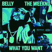 What You Want by Belly
