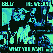 What You Want von Belly