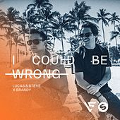 I Could Be Wrong von Lucas & Steve