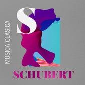 Música Clásica Schubert by Various Artists