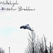 Hallelujah by Þröstur Brekkan