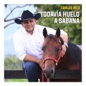 Todavía Huelo a Sabana de Carlos Rico
