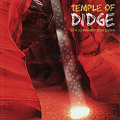 Temple of Didge - Chill Out Meditation Didge Grooves by Various Artists