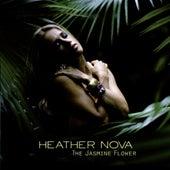The Jasmine Flower by Heather Nova