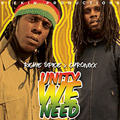 Unity We Need by Richie Spice