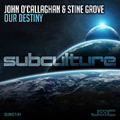 Our Destiny von John O'Callaghan