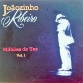 Milhões de Uns, Vol. 1 von Joãozinho Ribeiro