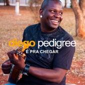 É pra Chegar de Diego Pedigree
