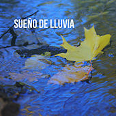 Sueño de lluvia by Various Artists