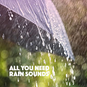 All You Need Rain Sounds by Various Artists