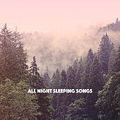 All Night Sleeping Songs by Various Artists