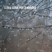 Lluvia suave por la mañana by Various Artists
