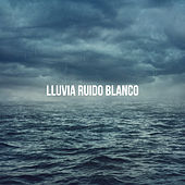 Lluvia: ruido blanco by Various Artists